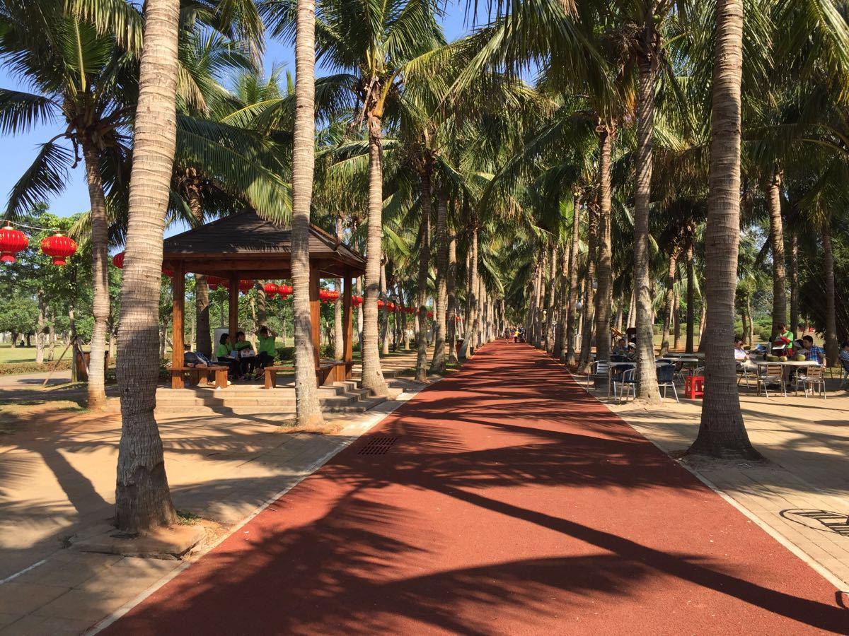 暂无 地址: 海口市龙华区滨海大道 亮点 绿化很好的公园,可以体验海口