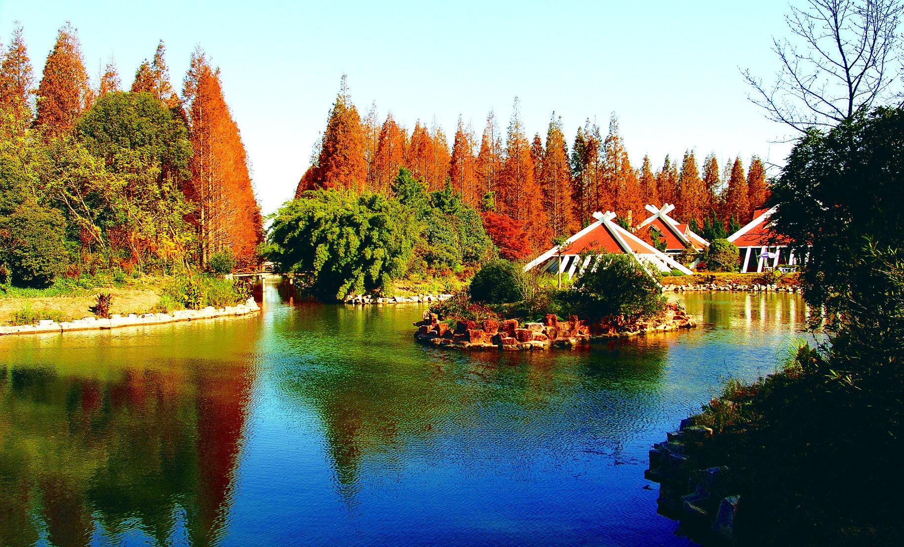 东平国家森林公园图片